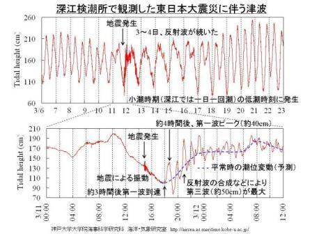 深江観測津波.jpg